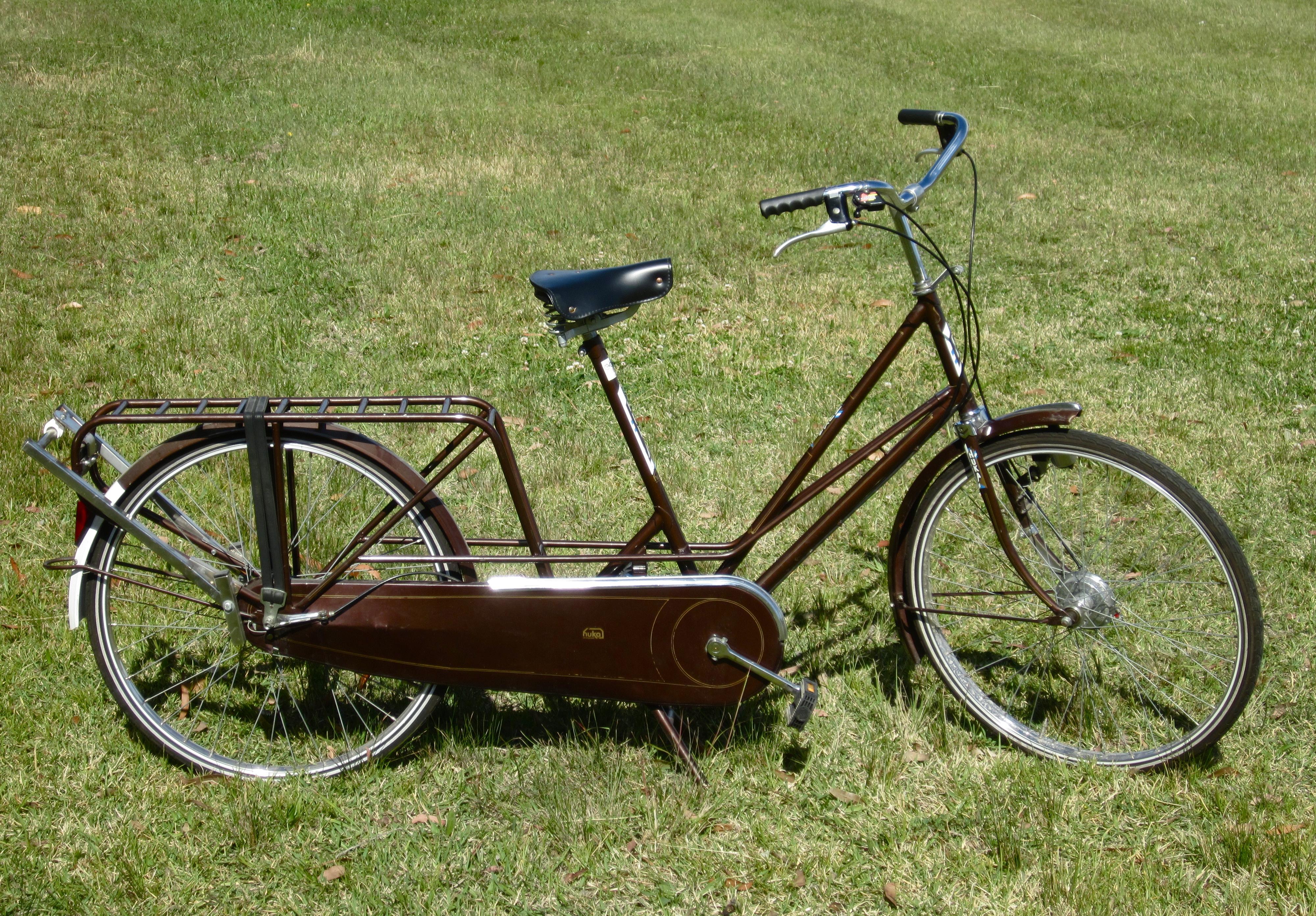 Gazelle Cabby A New Recyclist