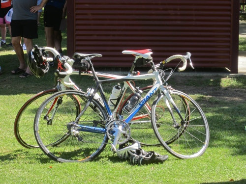 typical mamil apparatus