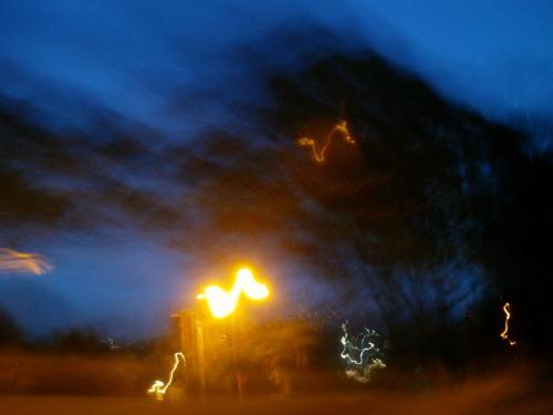 some street lights