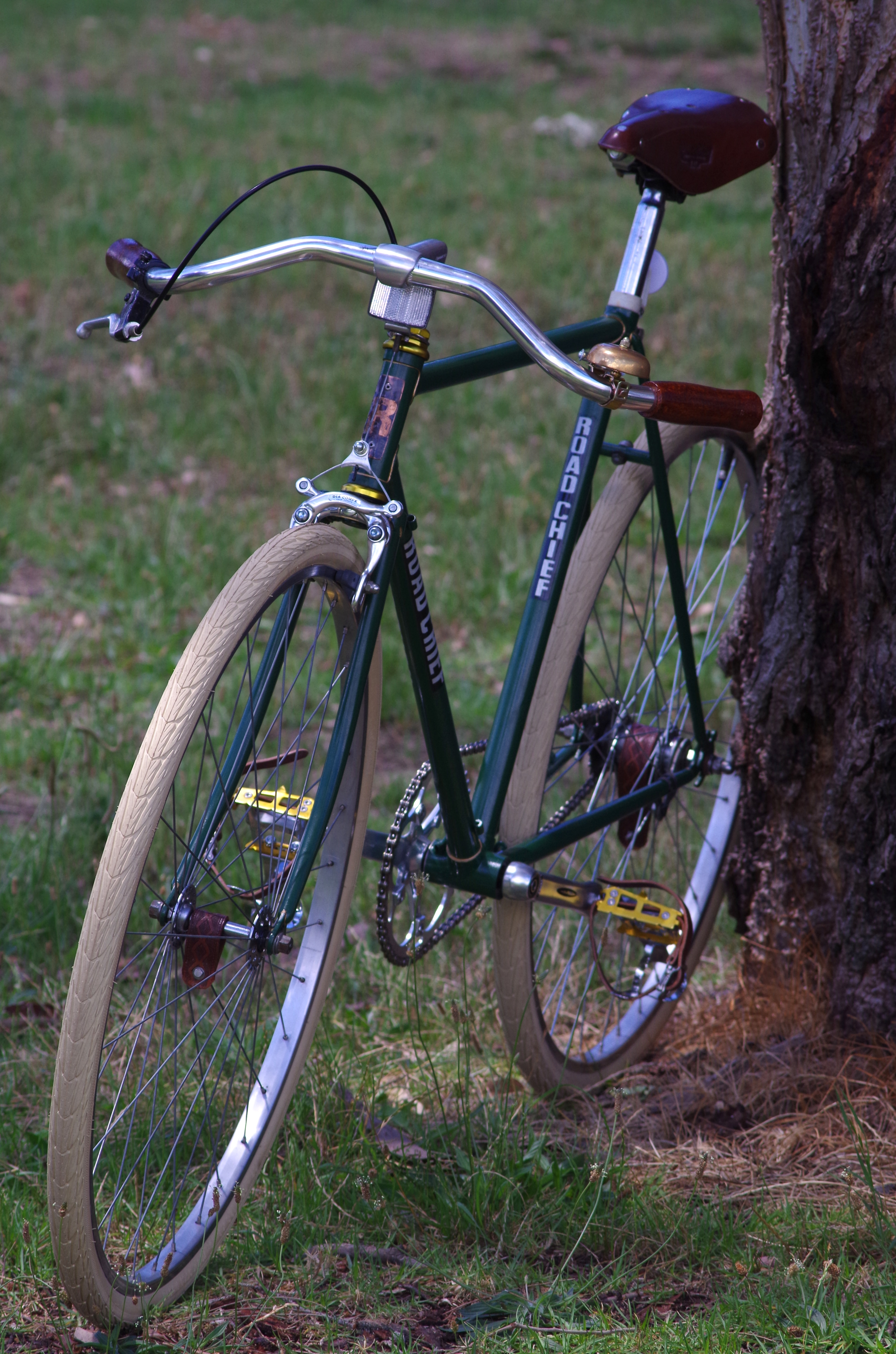 road chief bicycle | a new recyclist
