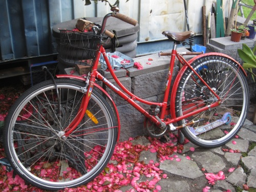 Vicki's speedwell with the modern wheels