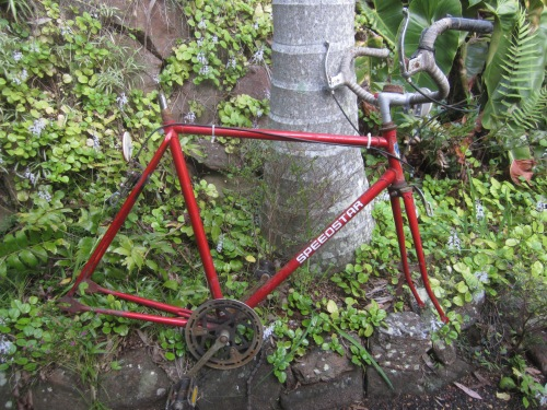 speed star single speed - interesting, but poor quality